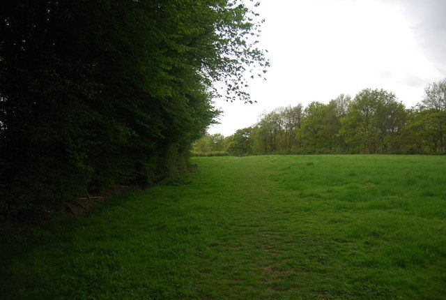 Footpath along the edge of the woodland