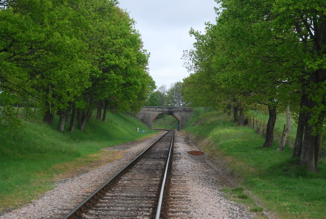 Bridge over the Bluebell Railway