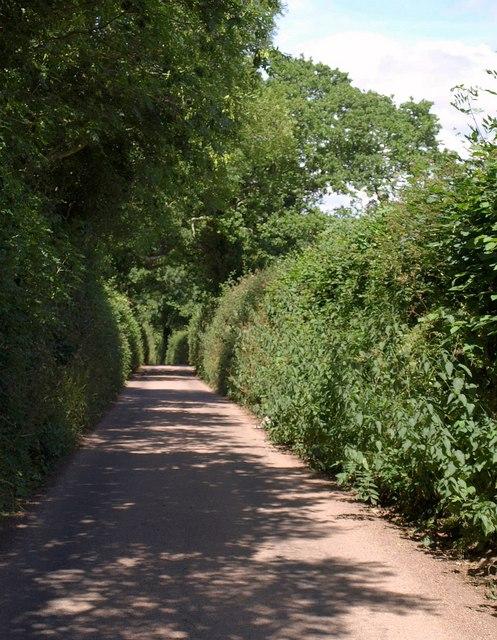 Lane near Woodmanton