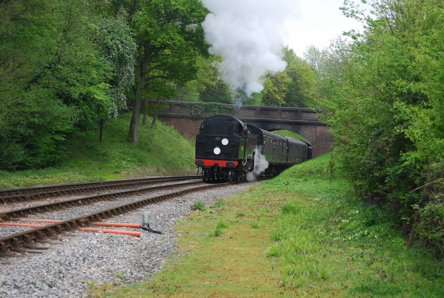 Steam train on the Bluebell Line