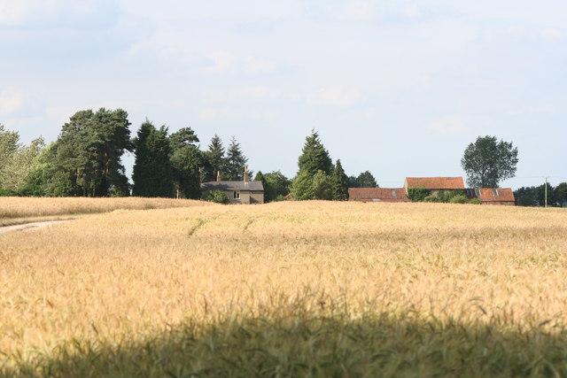 Clement's Farm