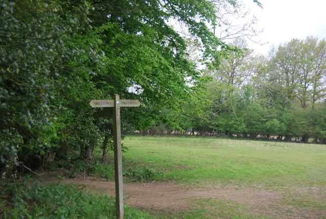 Footpath signpost, edge of Wapsbourne Wood