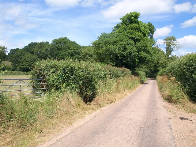 Exe View Road