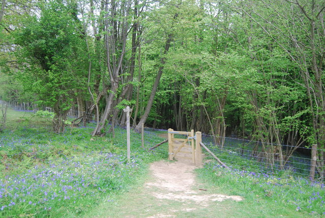 Sussex Ouse Valley Way entering Wapsbourne Wood