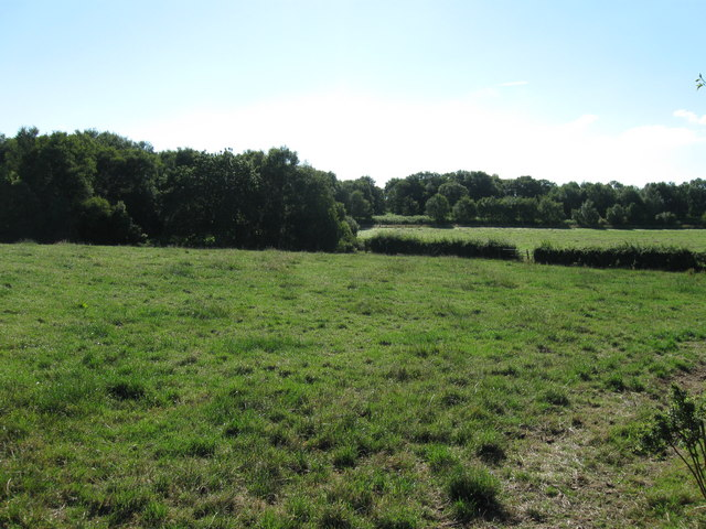 Field near Glasson Moss