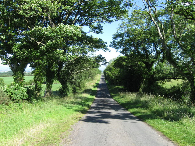 Country Lane looking NW