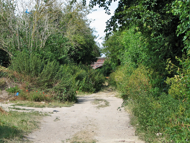 Trackbed of the former harbour line