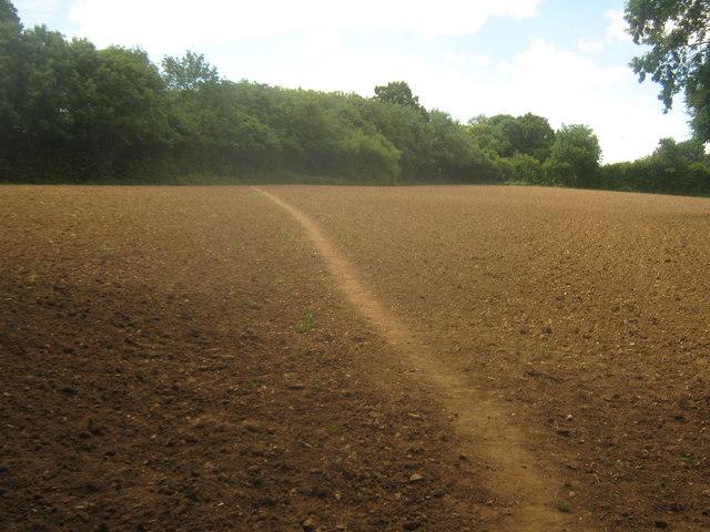 Footpath to Kemberland Wood