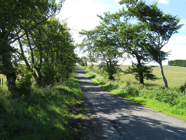 Country Lane towards Keepres Cottage