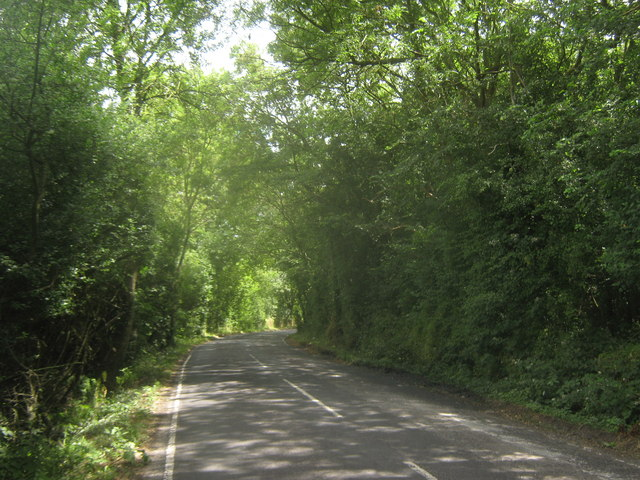 Hawe Lane beside Hoades Wood