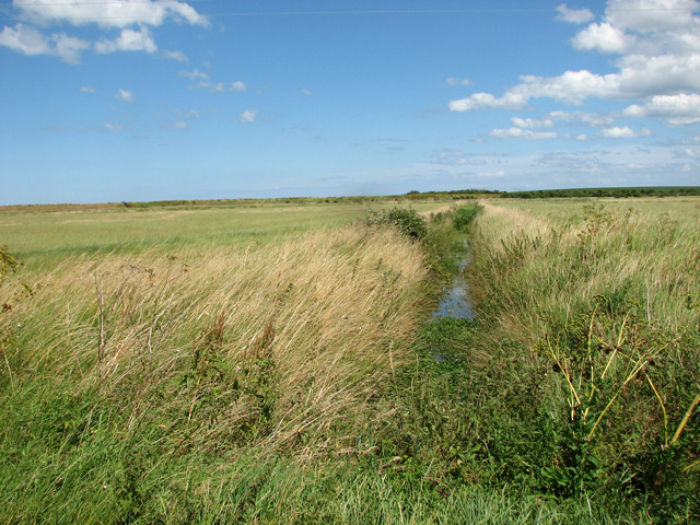 Drainage ditch south of Wells Salt Marshes
