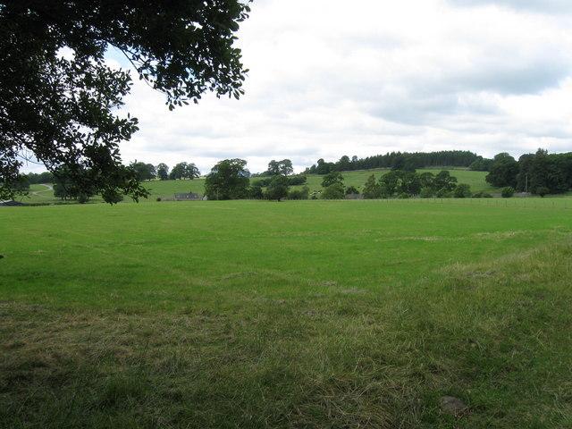 Fields near Greystoke
