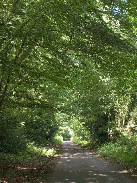 Wright's Lane
