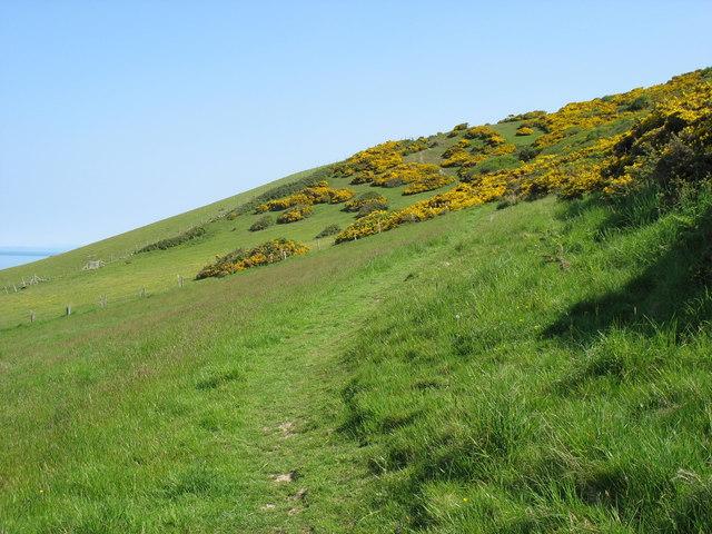 The Ceredigion Coast Path north-west of Llanrhystud