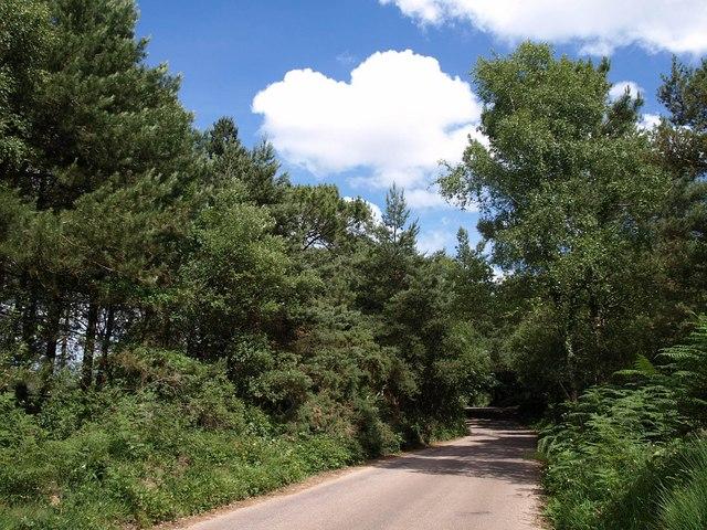 Road near Fryingpans