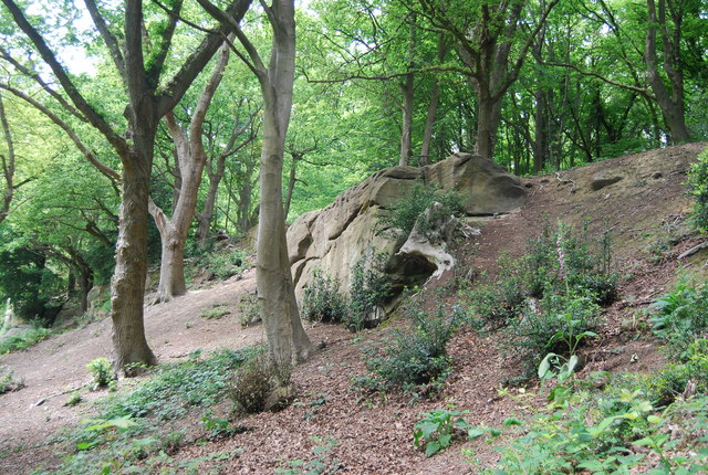 An outcrop of Tunbridge Wells Sandstone above Happy Valley