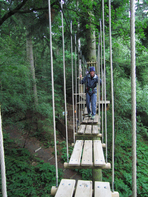 """Go Ape"" in the Wyre Forest"