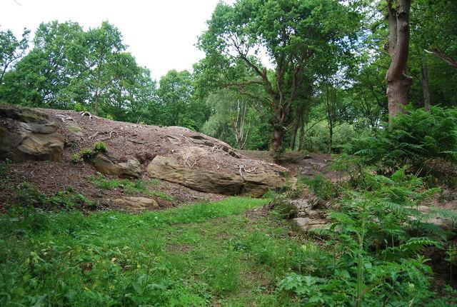 Outcrop of Tunbridge Wells Sandstone