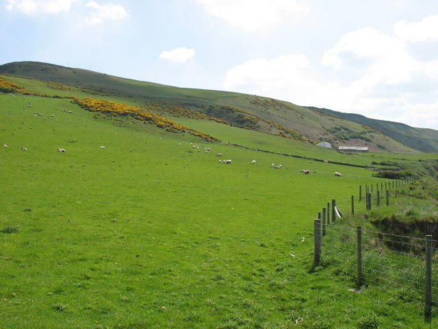Fields north of Mynachdy'r-graig