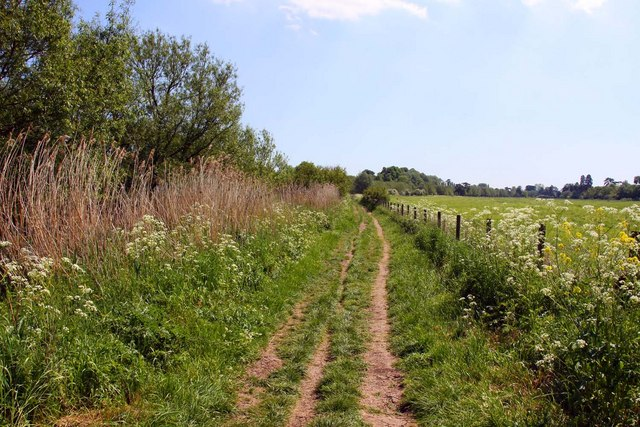 The Thames Path to Wallingford