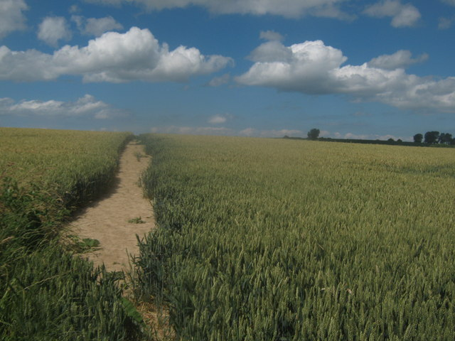 Footpath towards Hoath