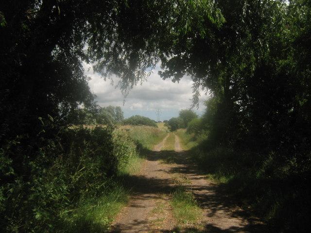 Footpath towards the Nethergong Penn