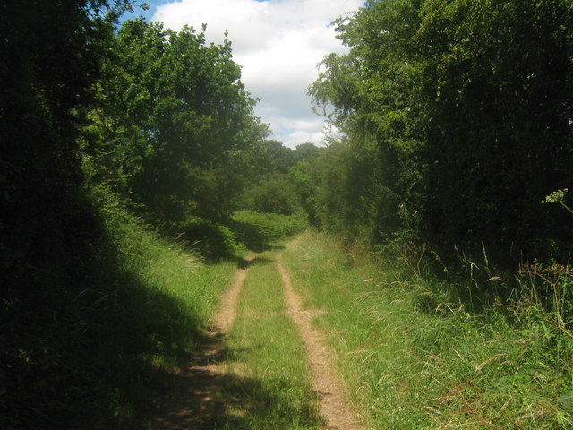 Footpath towards Nethergong Penn (2)