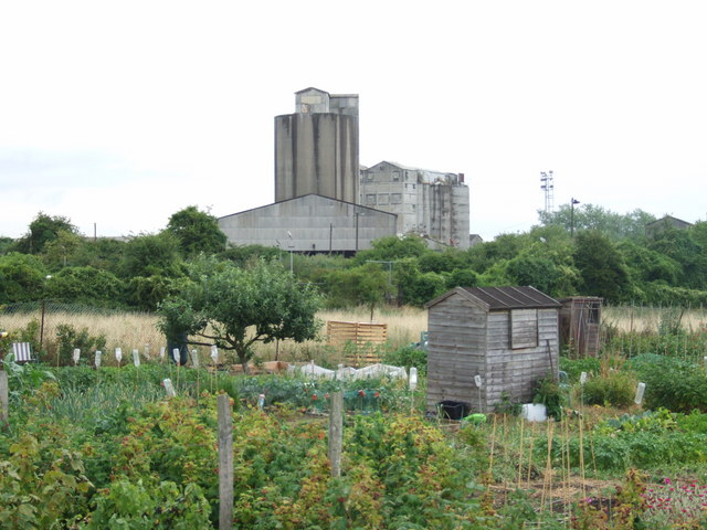 Allotments with Halling concrete works in the background