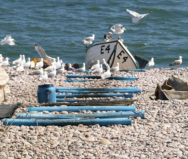 Boat rollers, gulls and boat