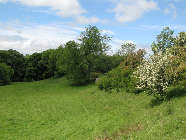 Pastures and woodland near Burn House