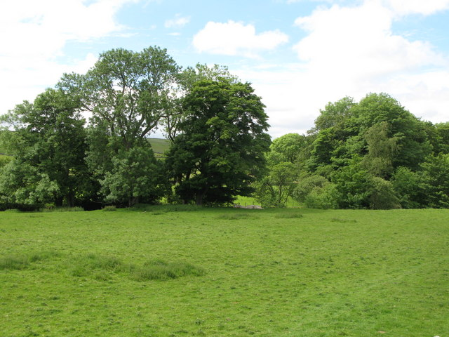 Pastures and woodland near Burn House (2)