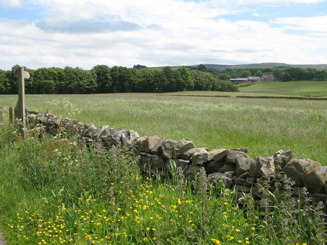 Pastures northwest of Burn House