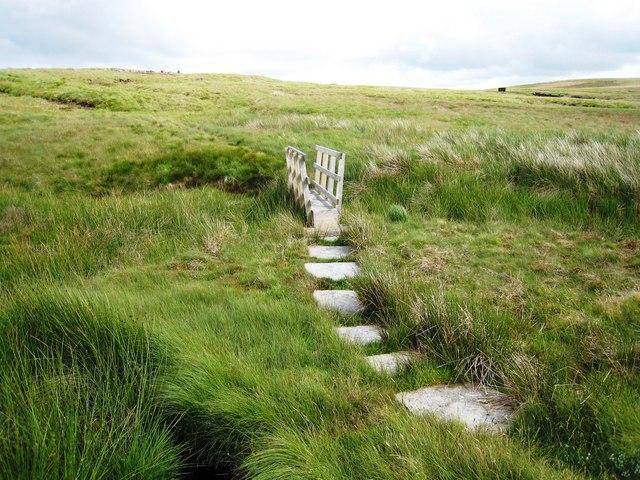 Footbridge and stepping stones