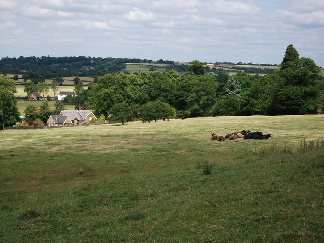 School Cottage and cows in field