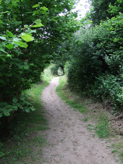 Footpath by the Stort navigation