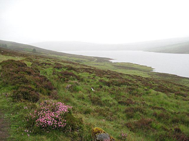 Loch Errochty in the rain