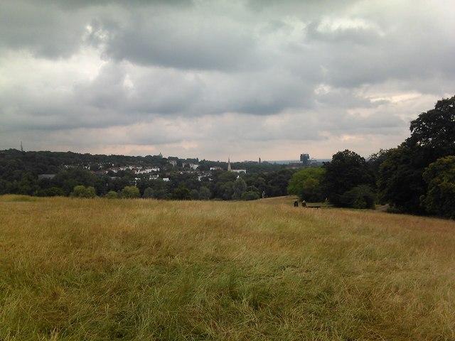 View of St Joseph's Church, Highgate Hill, from Parliament Hill