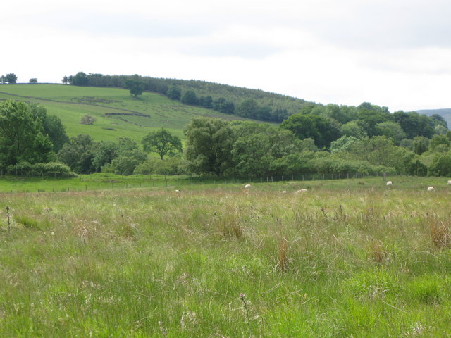 Pastures and woodland north of East Stonehouse