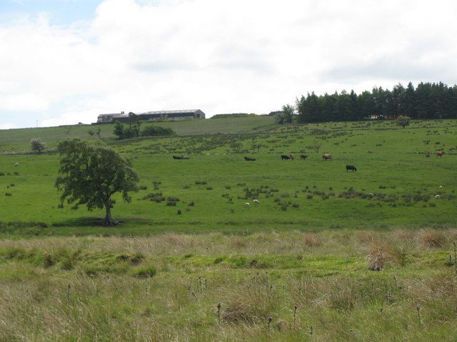 Pastures and woodland north of Dykes