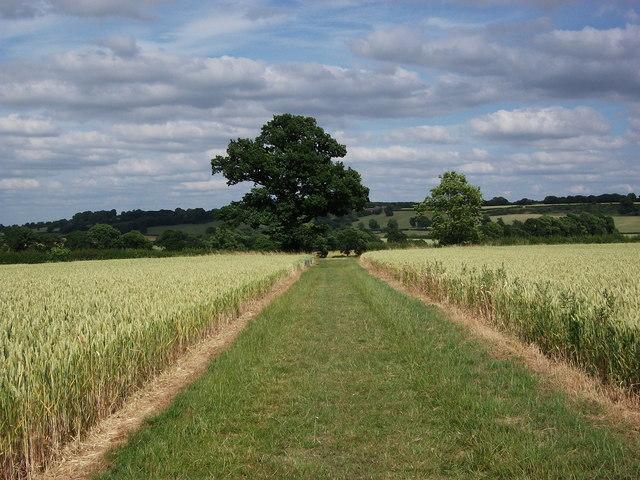 Path to Stoneton from Wormleighton