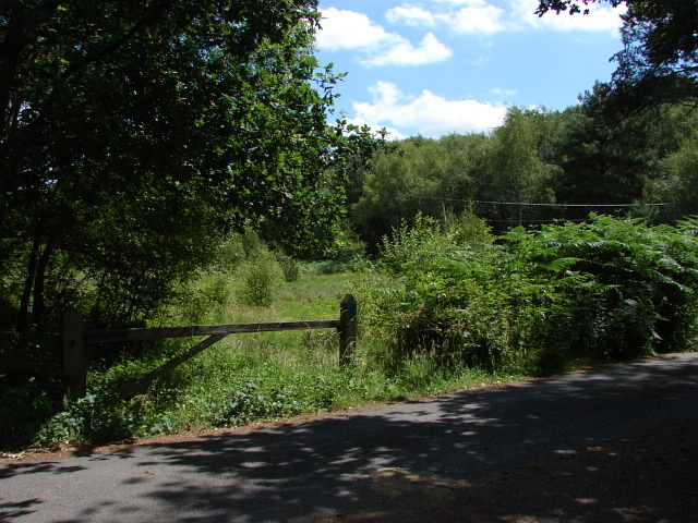 West End Common