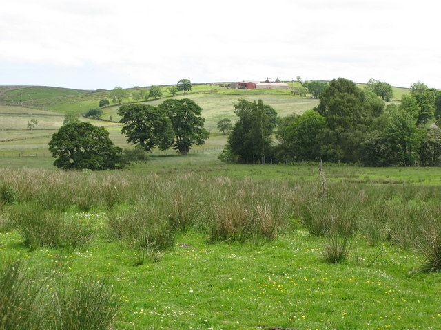 Pastures and woodland west of Low Ramshaw