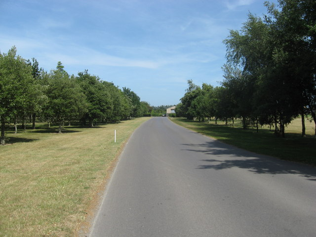 The road leading to Hoe Farm