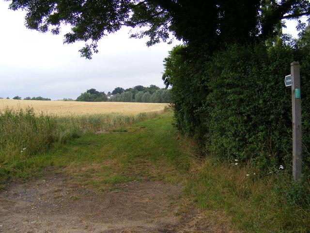 Bridleway to Kettleburgh Road