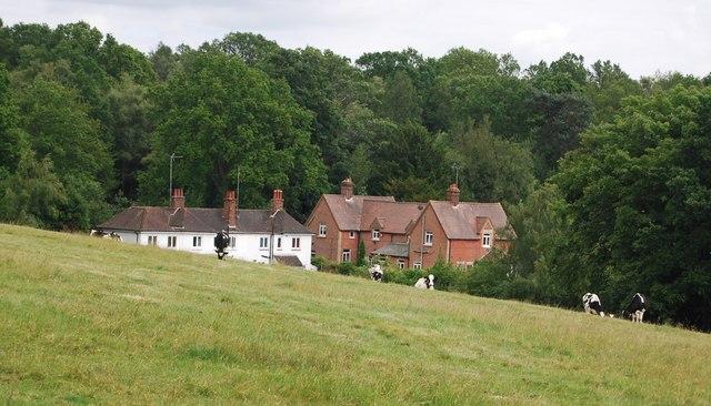 Houses on Hungershall Lane