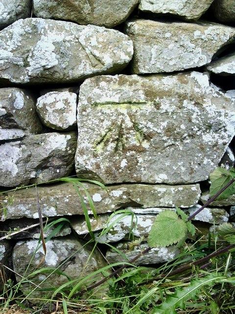 Dry stone wall near Browna Paddocks