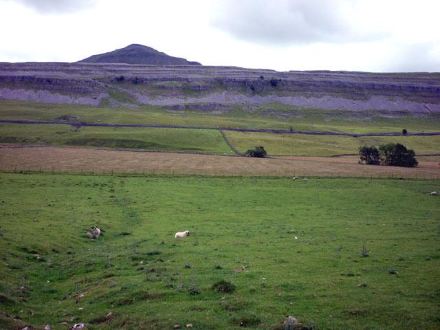 Twisleton Pastures, Chapel-le-Dale