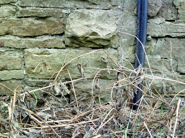 Benchmark on outbuilding at Browna Paddocks