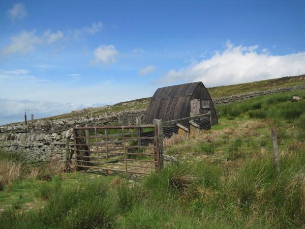 Shepherd's Hut, Eals Fell