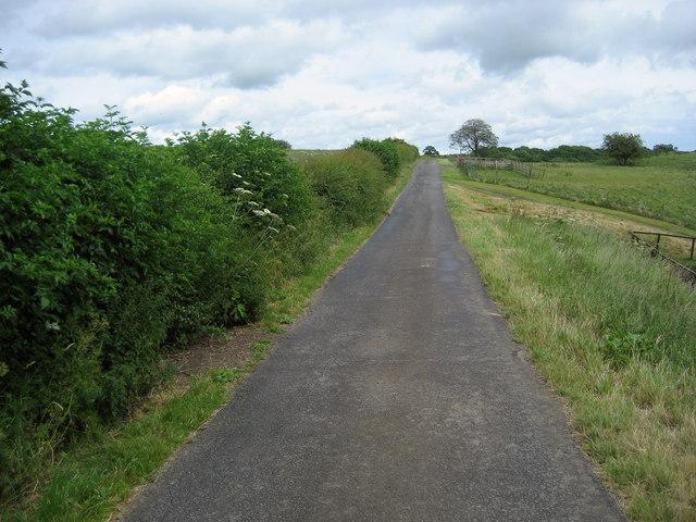 Access Lane from Newsham Grange